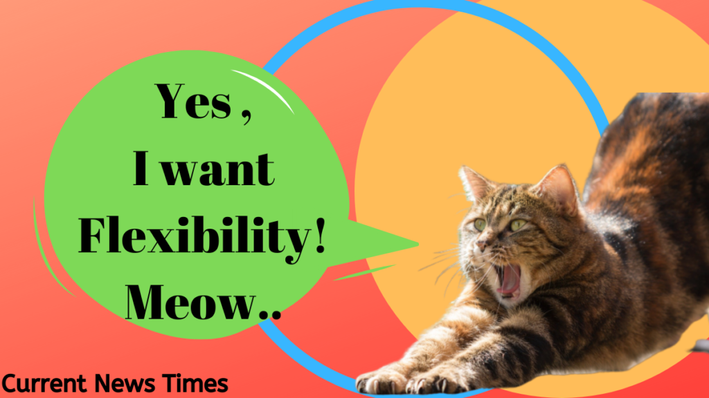 yoga-visuals-cat-saying-I-want-flexibility