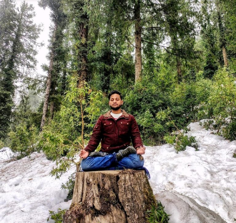 meditation-on-a-chopped-tree
