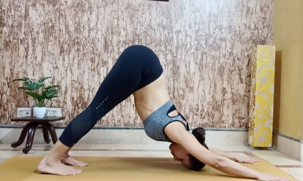 Adho Mukha Svasasana or Downward facing dog