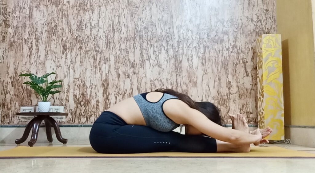 Paschimotanasana or Sitting forward fold