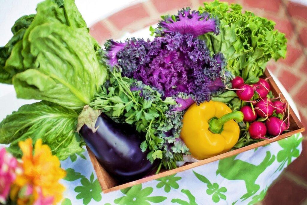 Vegetable-diet-plan